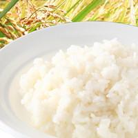 尾西食品アルファ米白飯