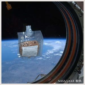アルファ米の活躍宇宙日本食